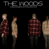 http://www.milkbarmag.com/2011/07/27/the-woods-by-david-mamet/