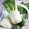 http://www.milkbarmag.com/2011/08/03/in-season-fennel-2/