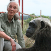 http://www.milkbarmag.com/2012/05/29/jane-goodall-visits-melbourne-zoo/