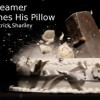 http://www.milkbarmag.com/2012/07/10/the-dreamer-examines-his-pillow/